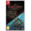 PLANESCAPE TORMENT & ICEWIND DALE ENHANCED EDITIONS SWITCH FR NEW