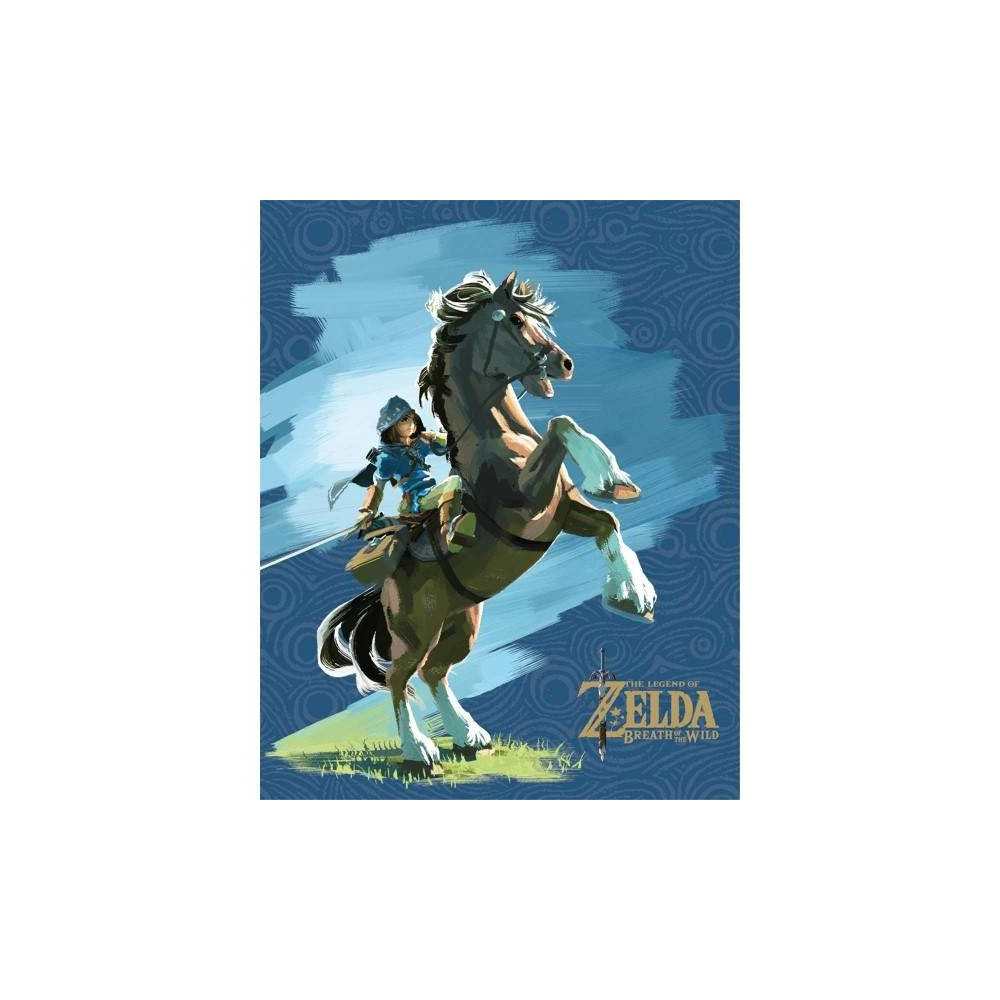 ZELDA OCARINA OF TIME POSTER 3D