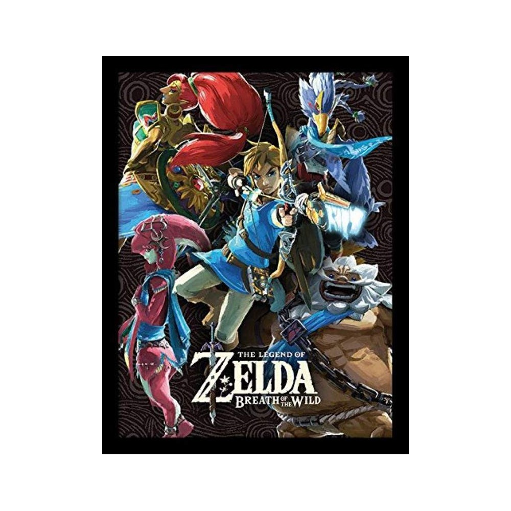 COLLECTOR PRINT HQ ZELDA BREATH OF THE WILD NEW