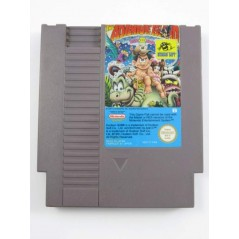 THE ADVENTURE ISLAND PART II TWO NES PAL-B FRA LOOSE